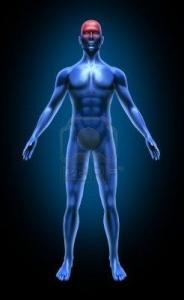 Crosystem - Funzioni Neurologiche