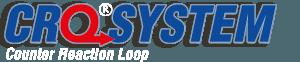 crosystem logo