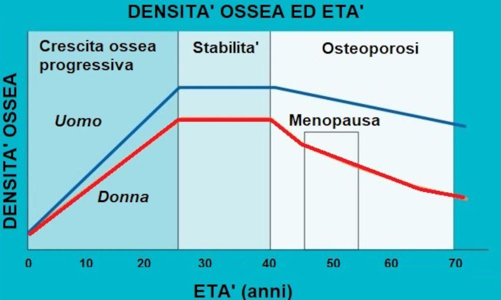 grafico osteoporosi